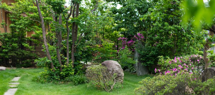 雑木の庭 写真