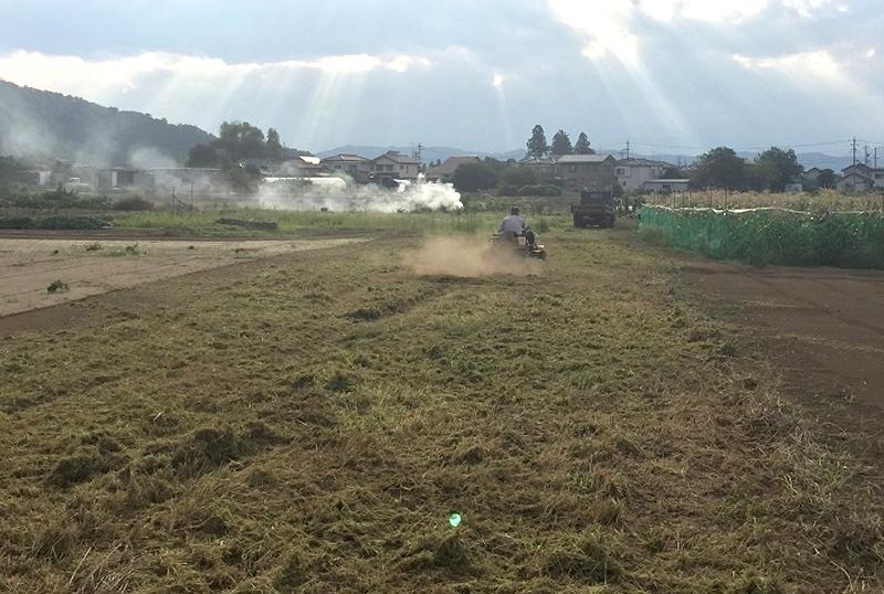 草刈り イメージ写真