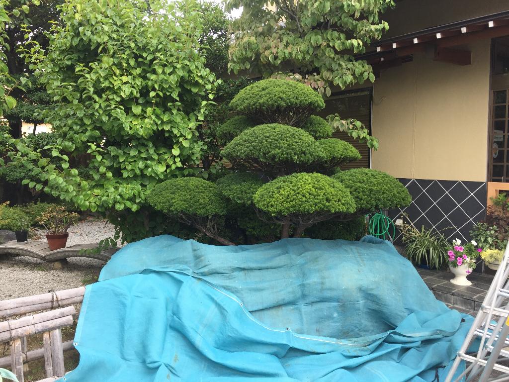 nagano-sushisada-before4-jpg