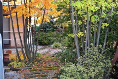 別荘地のような雑木の庭